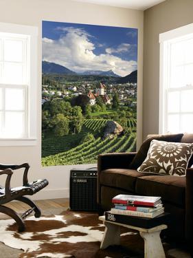 Switzerland, Bernese Oberland, Lake Thun, Spiez Castle by Michele Falzone