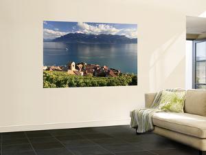 Switzerland, Vaud, Lavaux Vineyards, St; Saphorin Village and Lac Leman / Lake Geneva by Michele Falzone