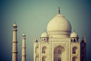 Taj Mahal, Agra, India by Michele Falzone