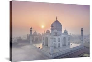 Taj Mahal Mist by Michele Falzone