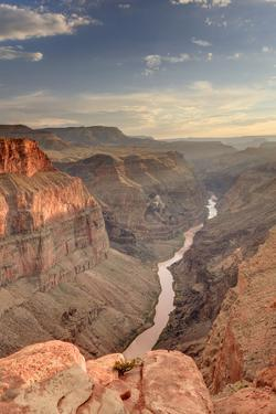 Toroweap Overlook, Grand Canyon by Michele Falzone