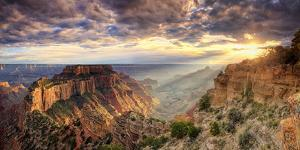 USA, Arizona, Grand Canyon National Park, North Rim, Cape Royale by Michele Falzone