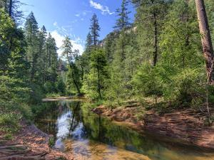 USA, Arizona, Sedona, Oak Creek Canyon, West Fork Trail by Michele Falzone