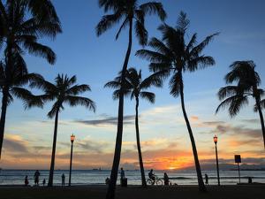 USA, Hawaii, Oahu, Honolulu, Waikiki Beach, Kapiolani Park by Michele Falzone
