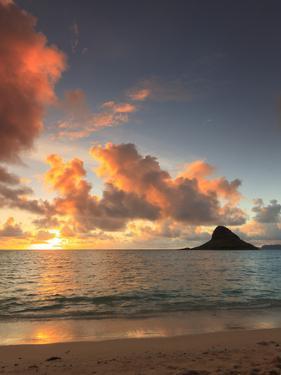 USA, Hawaii, Oahu, Kualoa Beach Park, Mokolii Island (Chinaman's Hat) by Michele Falzone