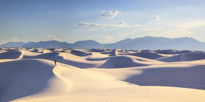USA, New Mexico, White Sands National Monument by Michele Falzone