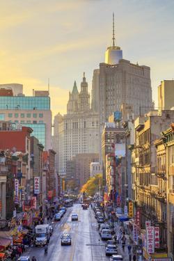 Usa, New York, New York City, Manhattan, Chinatown by Michele Falzone