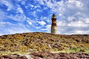Argentina, Santa Cruz. Puerto Deseado, Penguin Island. by Michele Molinari