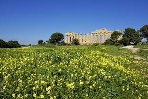 Italy, Sicily, old city of Selinunte, ruins of the Greek temple by Michele Molinari