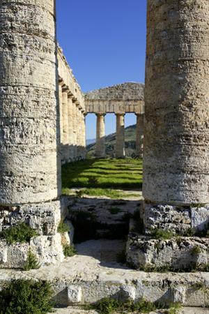 Italy, Sicily, Segesta. Greek temple columns. by Michele Molinari