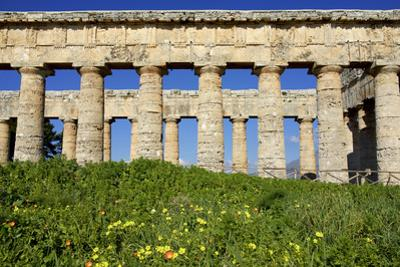 Italy, Sicily, Segesta. The Greek temple is made of 36 columns. by Michele Molinari