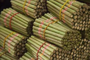 Cigar factory in Myanmar. by Michele Niles