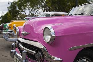Classic 1950's car in Old Havana, Cuba. by Michele Niles