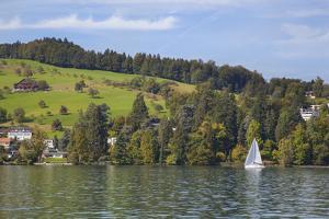 Lake Lucerne, Switzerland. Sailboat sailing on lake. by Michele Niles