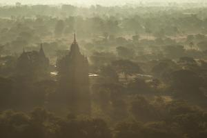 Morning view of the temples of Bagan, Myanmar. by Michele Niles