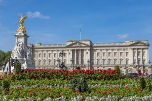 Summer flowers in front of Buckingham Palace in London, United Kingdom. by Michele Niles