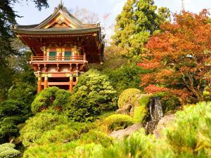 Japanese Tea Garden, Golden Gate Park, San Francisco, California, USA by Michele Westmorland