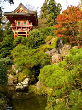 Japanese Tea Garden, Golden Gate Park, San Francisco, California, USA by Michele Westmorland