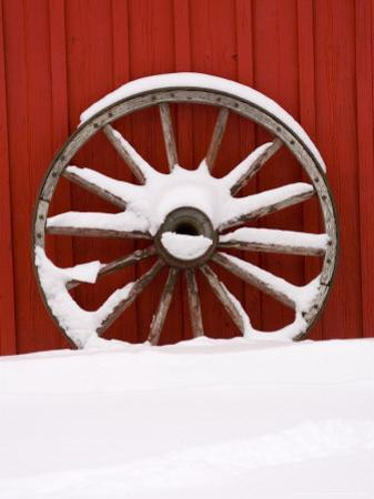 Martin Stables, Wheel Detail, Banff, Alberta by Michele Westmorland