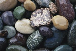 Pacific Northwest USA, Colorful River Rocks by Michele Westmorland
