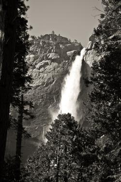 Upper Yosemite Falls in Monochrome by Michele Yamrick
