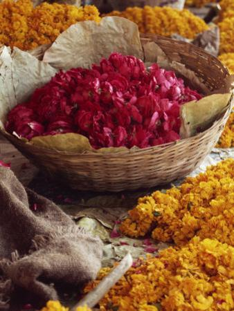 Close-Up of a Basket of Red Flowers, with Yellow Flowers, in the Market, Jaipur, Rajasthan, India by Michelle Garrett