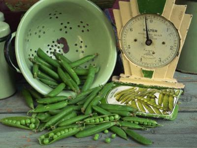 Fresh Garden Peas in an Old Colander with Old Salter Scales and Seed Packet by Michelle Garrett