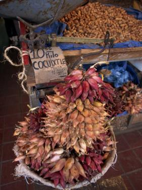Tequila Fruit for Sale on a Stall in Mexico, North America by Michelle Garrett