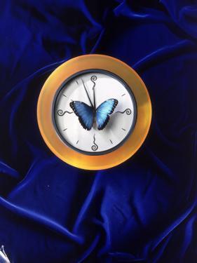 Butterfly on Top of Clock by Michelle Joyce
