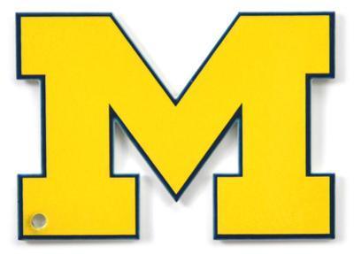 Michigan Wolverines Steel Magnet