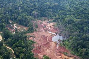 Destruction of Rainforest Caused by Gold Mining, Guyana, South America by Mick Baines & Maren Reichelt