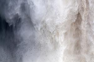 Flock of Swifts Flying to their Roost Behind the Curtain of Falling Water of Kaieteur Falls, Guyana by Mick Baines & Maren Reichelt