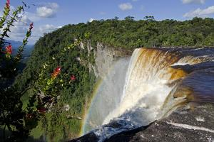 View across the Rim of Kaieteur Falls, Guyana, South America by Mick Baines & Maren Reichelt