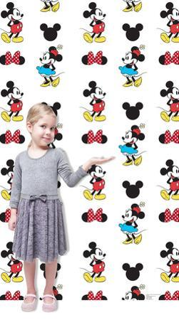 Mickey and Minnie Step and Repeat Standup
