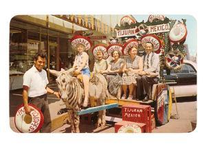 Midwesterners in Zebra Cart, Tijuana, Mexico