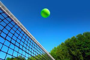Tennis Ball on Net's Edge by mikdam