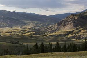 A Large Valley In The Gros Ventre Mountains, Bridger-Teton National Forest, Wyoming by Mike Cavaroc