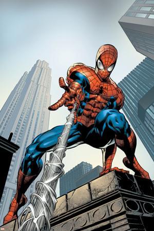 Amazing Spider-Man No.520 Cover: Spider-Man Swimming