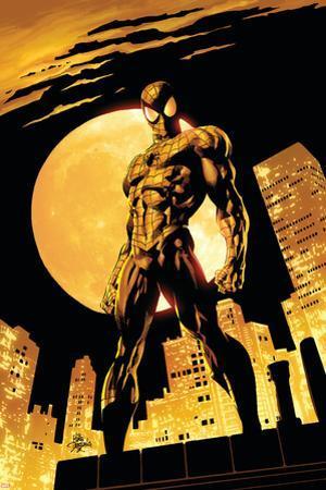 Amazing Spider-Man No.528 Cover: Spider-Man