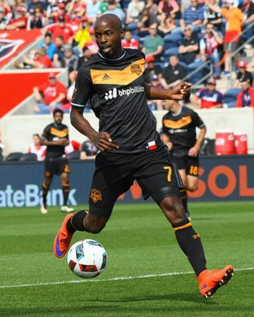 Mls: Houston Dynamo at Chicago Fire by Mike Dinovo
