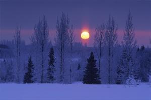 Hoarfrost Sunset by Mike Grandmaison