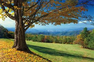 Blue Ridge Beauty by Mike Jones
