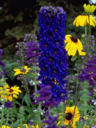 Flowers, AK