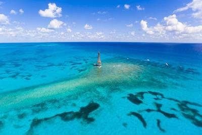 Aerial View of Diving and Snorkeling Boats by Mike Theiss