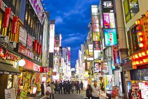 Crowds of People and Colorful Signs in the Shinjuku District by Mike Theiss
