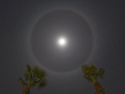 Looking Straight Up at Moon Rings on a Cool Night by Mike Theiss