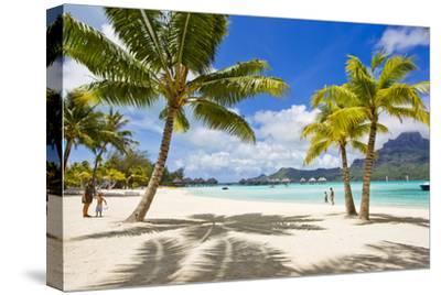 Palm Trees and their Shadows on Bora Bora's White Sand Beaches by Mike Theiss