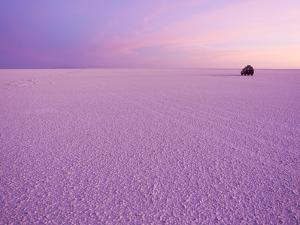 Sunrise Tints the World's Largest Salt Flats Pink by Mike Theiss