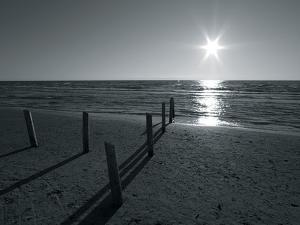 Coastal Path II by Mike Toy