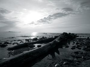 Coastal Path IV by Mike Toy